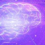 Técnologia e Insights Boxnet | Transformação Analítica